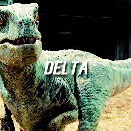 Bird Raptor Delta Jurassic World