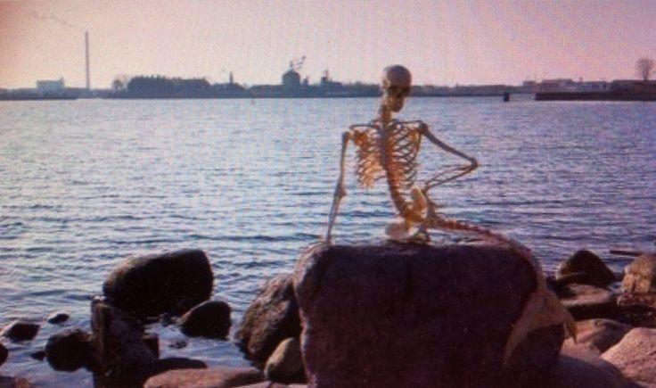 Skelet van 'de kleine zeemeermin'