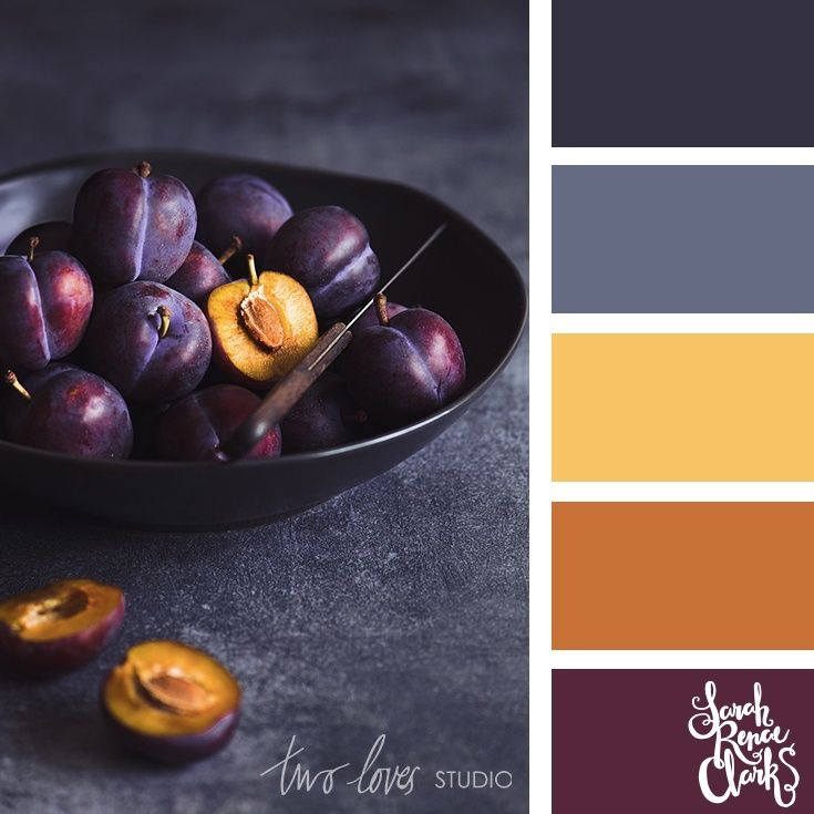 Purple And Grey Color Schemes: 25 Color Palettes Inspired By Beautiful Food