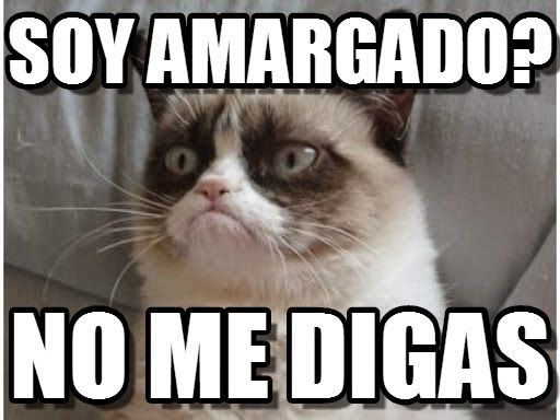 grumpy cat frases español - Buscar con Google