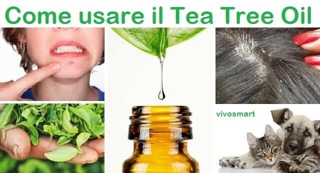 Il tea tree oil è sicuramente un prodotto da tenere in casa per il trattamento di ben 20 disturbi diversi. Dove trovarlo e come utilizzarlo