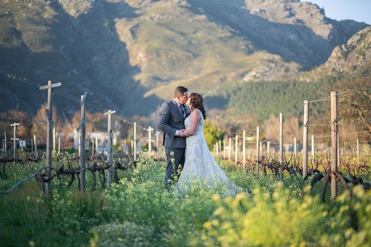 Franschhoek Wedding | Credit: Karina Conradie | bride and groom in vineyard