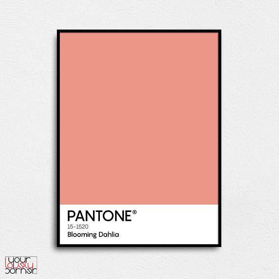 Pantone poster Blooming Dahlia Pantone spring 2018 Pantone