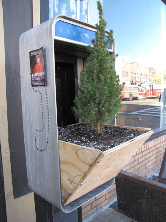 repurposed phone box into tree planters