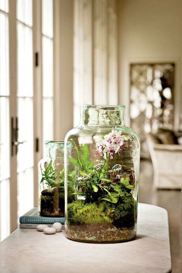 108 Container Gardening Ideas: Terrarium