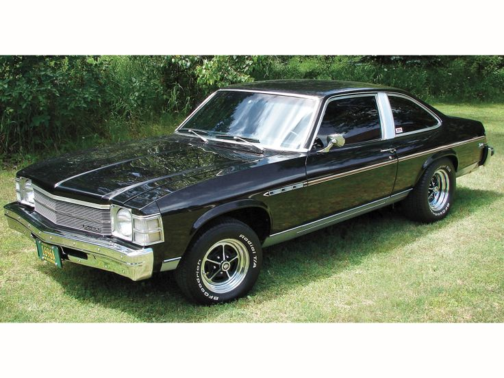 Buick Skylark | 1976 Buick Skylark Photo 15