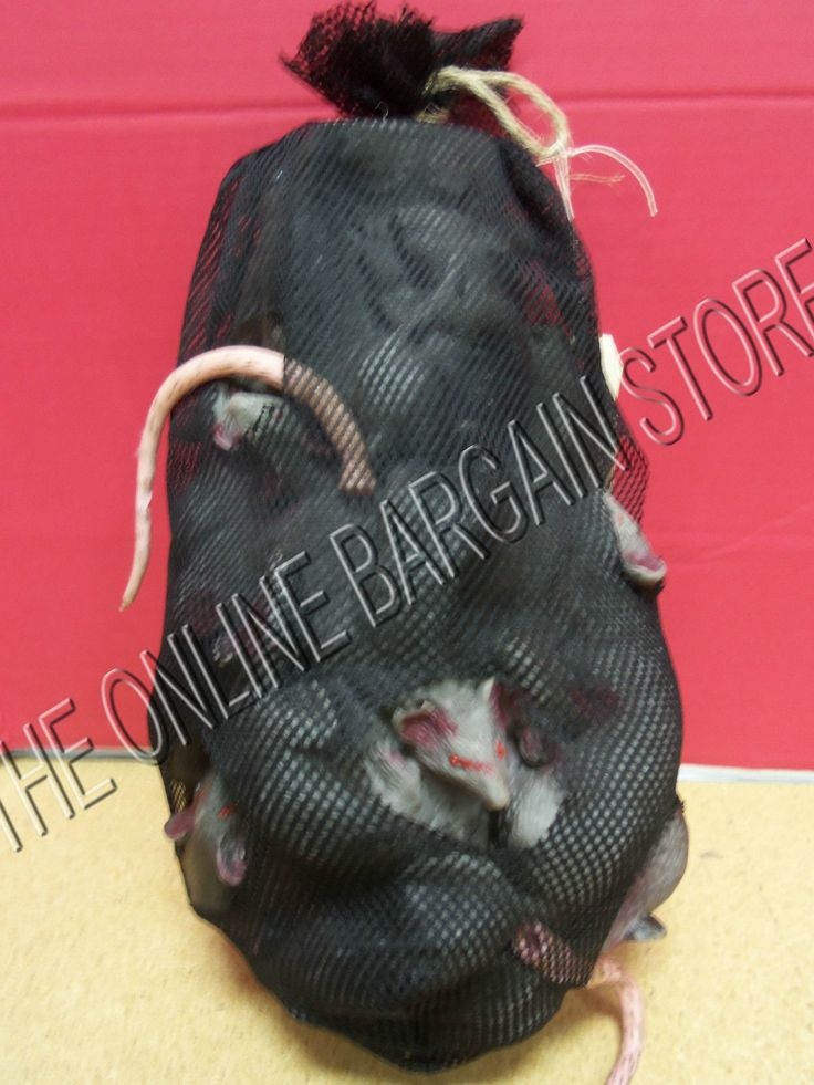 frontgate grandinroad halloween hanging bag of rats with sound creepy sonic - Frontgate Halloween