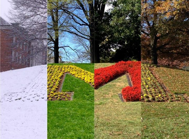 Michael Natoli took these 4 pictures over the course of the last year at University of Maryland, College Park
