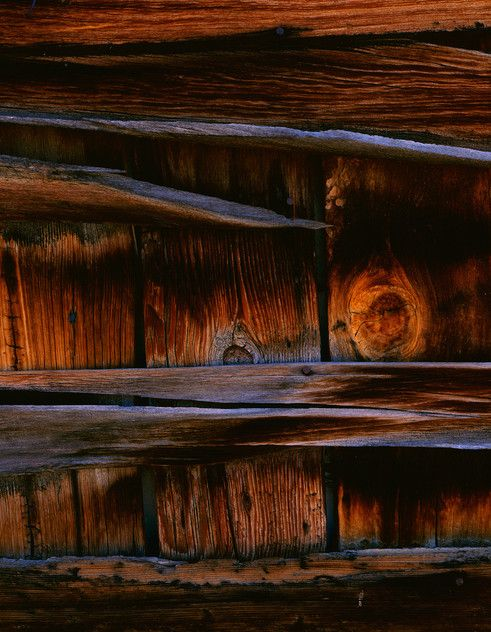 Bannack shed - David Ward