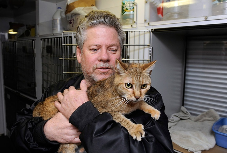 Bill Ryan, of Inwood, New York, comforts his cat Amy before leaving her at a pet shelter at Mitchell Park's Field House, run by the Nassau County Office of Emergency Management and Pet Safe Coalition in Uniondale, New York, on October, 28, 2012. Pet owners could leave their pets at the shelter and afterwards seek shelter for themselves. before the arrival of Hurricane Sandy. (AP Photo/Kathy Kmonicek)