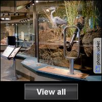 """Clark County Wetlands Park Free admission Free water bottle with Wetlands Park Logo to first 25 visitors who present """"Museum Month"""" Voucher"""