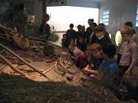 Rudersdal Museer/ Stone Age Museum Holte
