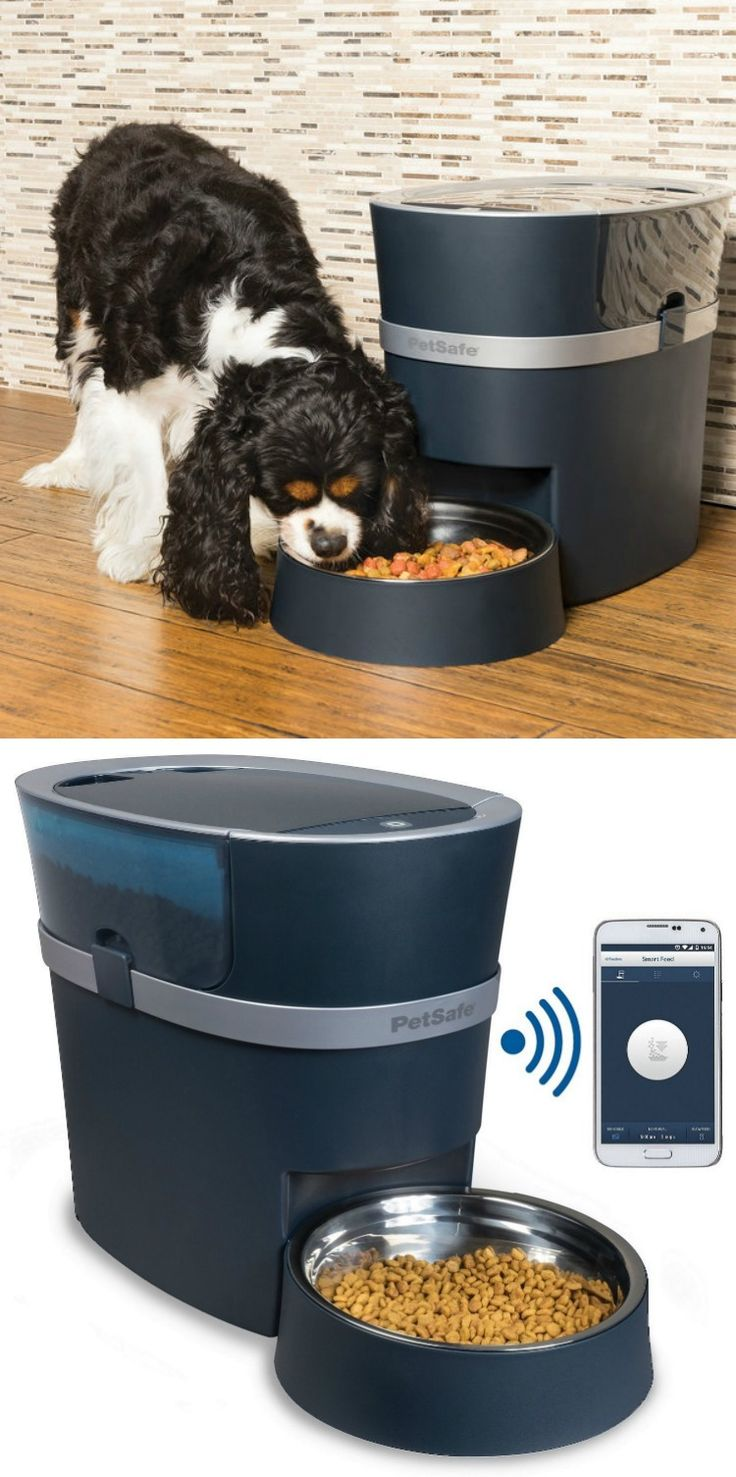 The PetSafe Smart Feed is a pet feeding solution for the modern pet parent. You can control and monitor your pet's meals from anywhere with your smartphone. #affiliate