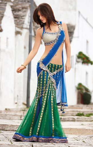 Latest Indian Fashionable Saree For 2011 (6)