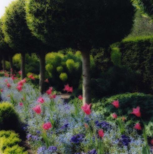 LYNN GEESAMAN Parc de Sceaux, (4-04-67c-7 ) France 2004