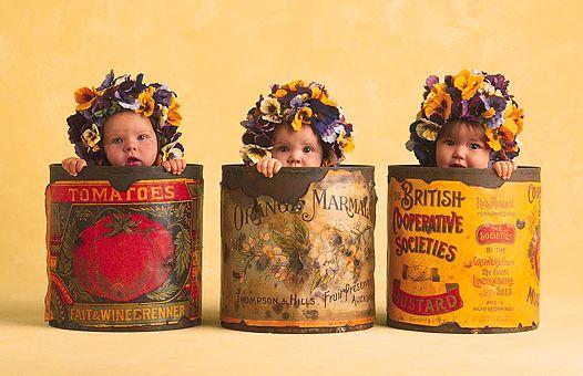 Saber Esperar é Uma Virtude Aceitar Sem Questionar Que: 1000+ Images About Anne Geddes On Pinterest