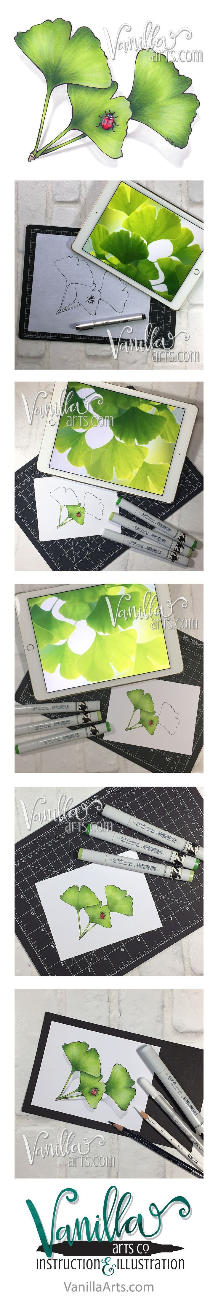"""""""Ginkgo"""" a smooth blending lesson from the Marker Painting Foundations   online course.    Change the way you think about coloring with Copic Markers. They're more   like paint than crayons!    Amy Shulke is a professional Illustrator who has used markers"""