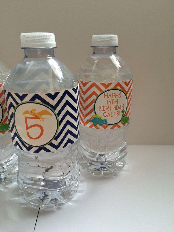 Dinosaur Water Bottle Labels  Dinosaur Theme Birthday Party