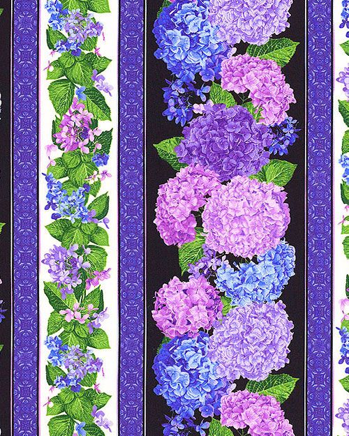 Hydrangea - Garden Queen Stripe - Black
