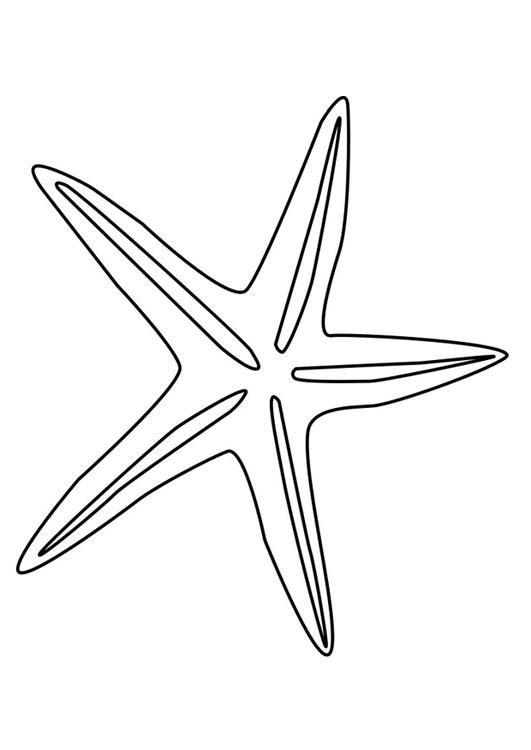 Bilde å fargelegge sjøstjerne - bil 27197.