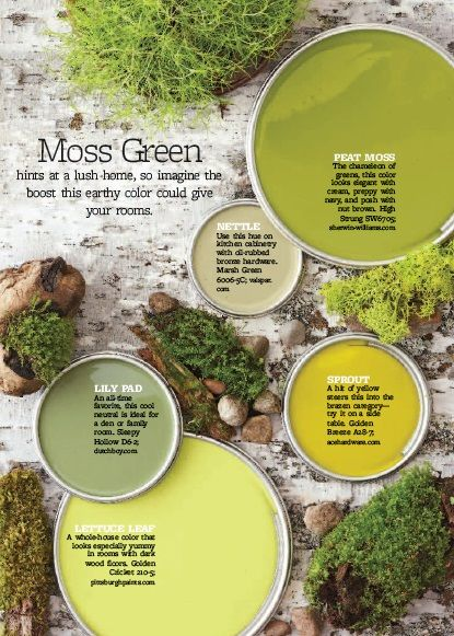how to make moss paint