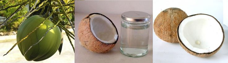 How Coconut Substantially Reduces Risk of Diabetes http://theblissbasket.com/how-coconut-substantially-reduces-risk-of-diabetes/