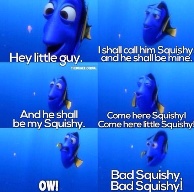Squishy Quote : 17 Best images about Finding Nemo on Pinterest Disney, Baby seahorse and Pixar movies