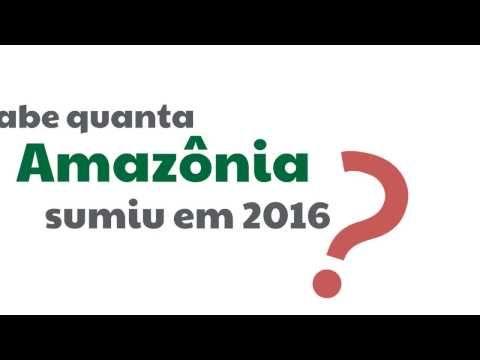 IPAM Amazônia | Desmatamento cresceu por igual na Amazônia em 2016, mostra análise
