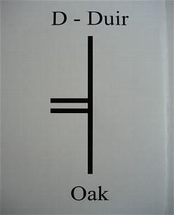 D is for Duir, the Celtic tree of Oak. Like the mighty tree it represents, Duir is associated with strength, resilience and self-confidence....