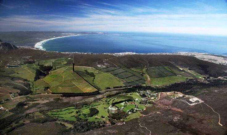 Coastline - Hermanus Wine Route