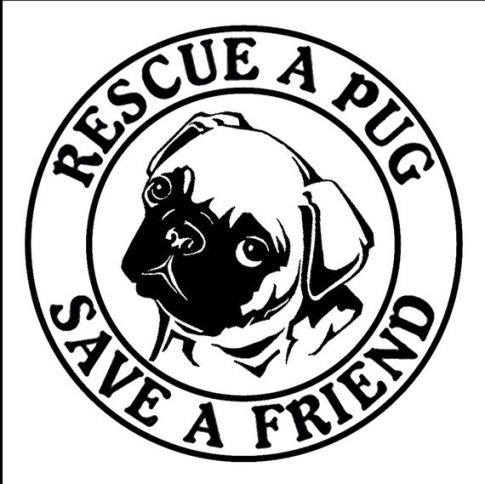 Pug Rescue. Amen! My three are rescues....