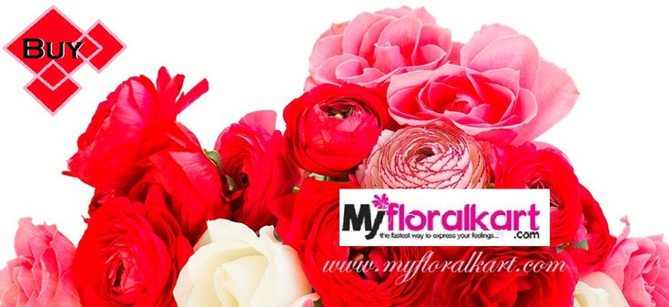 Myfloralkart.com is a leading online #Flowers, #Gifts, #Birthday_Cakes on same day delivery company in India. Which offers a whole new and wide range of exotic flower arrangement in a nice array for all occasions. All of our fresh #flower_arrangements are available for same day delivery in #India. An array of fresh #exotic_flowers delivered to the loved ones and colleagues expresses the feeling like nothing else.