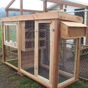 How+to+Build+Pigeon+Cages | Pigeon Coop: Pigeon Housing Information