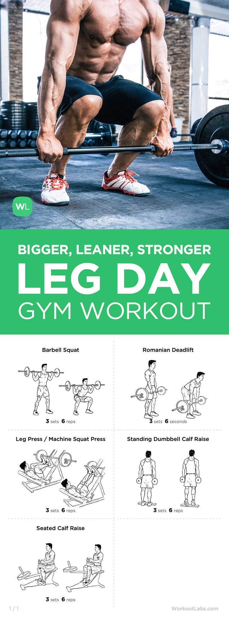 Free PDF: Mike Matthews Bigger Leaner Stronger Leg Day Workout for Men