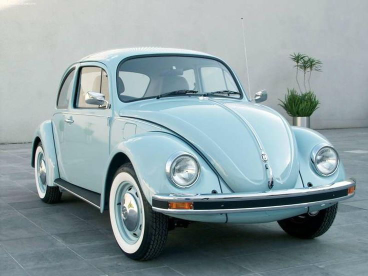 Beetle<3