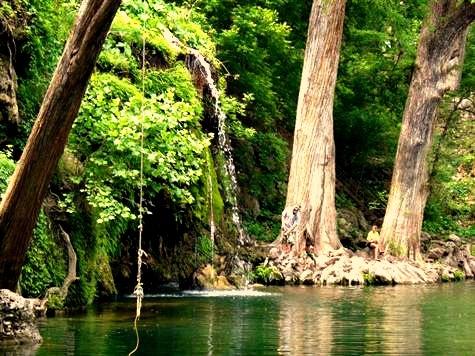 Krause Springs Swimming Hole Spicewood Tx Favorite