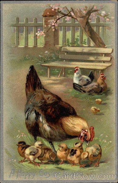 A Mother Hen and her Chicks Easter Post Cards Series 705 A Happy Easter to you