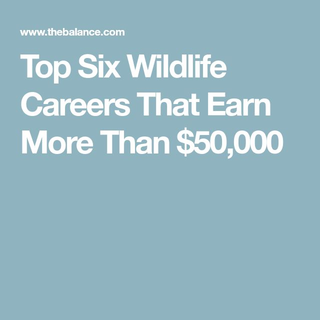 Best 25+ Marine biologist salary ideas on Pinterest Marine - marine biologist resume