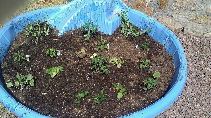 Quick Raised Garden Idea Hard Plastic Swimming Pool