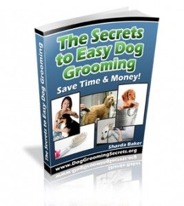 17 best images about dog grooming books on pinterest the for Apple 300 dollar book