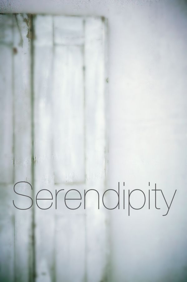 ".serendipity   /ˌsɛr(ə)nˈdɪpɪti/   noun  noun: serendipity; plural noun: serendipities     the occurrence and development of events by chance in a happy or beneficial way. ""a fortunate stroke of serendipity""   synonyms: chance, happy chance, accident, happy accident, fluke; luck, good luck, good fortune, fortuity, fortuitousness, providence; coincidence, happy coincidence  ""technical innovation may be the result of pure serendipity""      Origin    1754: coined by Horace Walpole, suggested by…"
