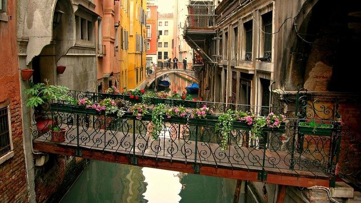 Flowered Walkway, Venice, Italy...I will go there someday