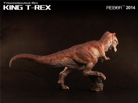 REBOR Tyrannosaurus rex KING T-REX Museum Class Dinosaur Model | Mohock New Zealand