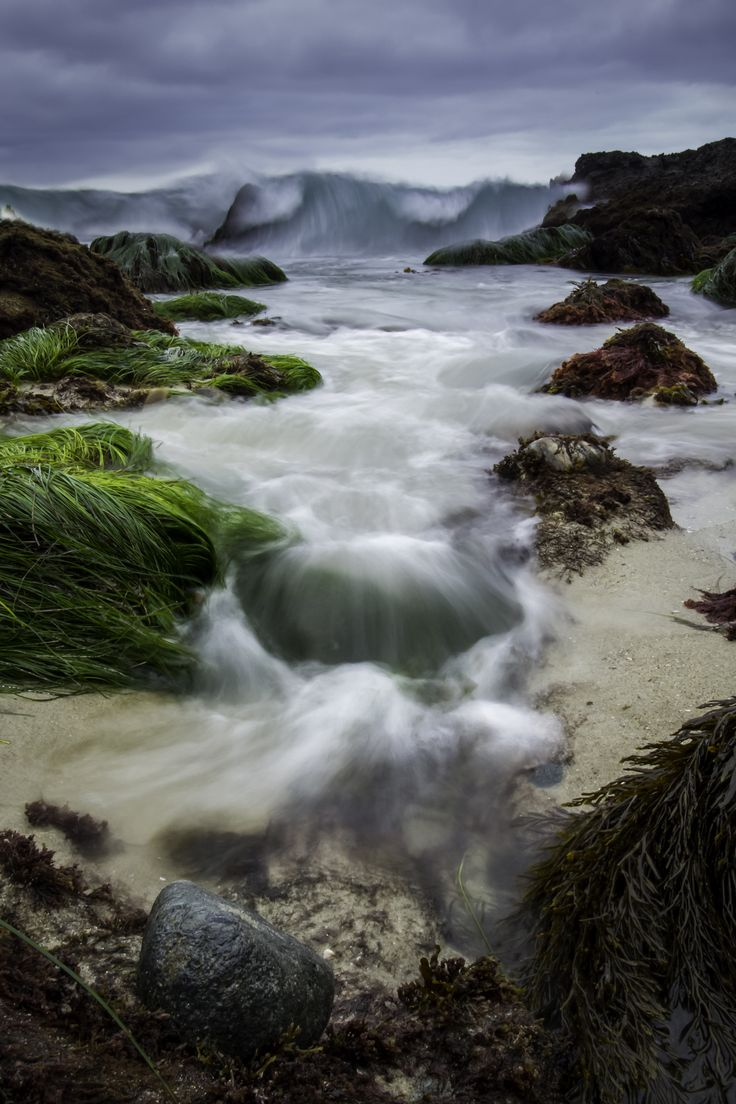 Best 25 laguna beach tide pools ideas on pinterest laguna pools a wave coming in a low tide that almost cost me my camera laguna beach nvjuhfo Choice Image