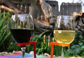 Perfect gift - don't spill your glass of wine again! Hands Free Wine Glass Holders  http://www.myhandsfree.co.za/