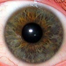 Meaning Of Eye Colors-- Kharis' blue eye is the supernatural part of her and her green eye is the part of her that is directly related to her humanity/ natural self