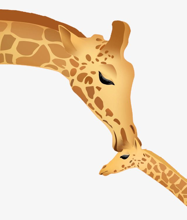 Mom And Baby Giraffe Clipart Google Search Baby Giraffe Giraffe Mom And Baby