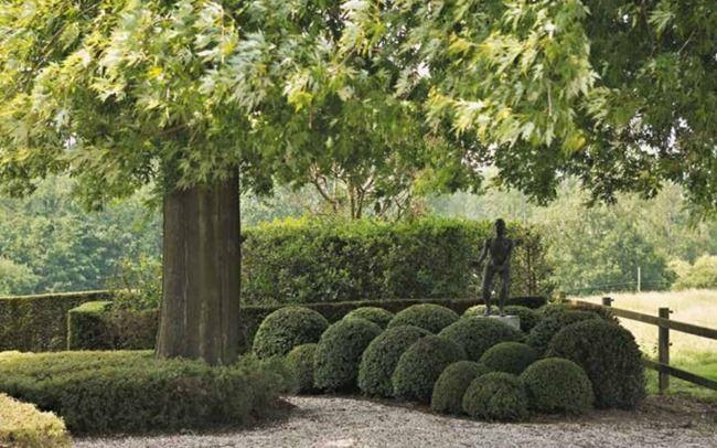 Belgian beta plus gardens