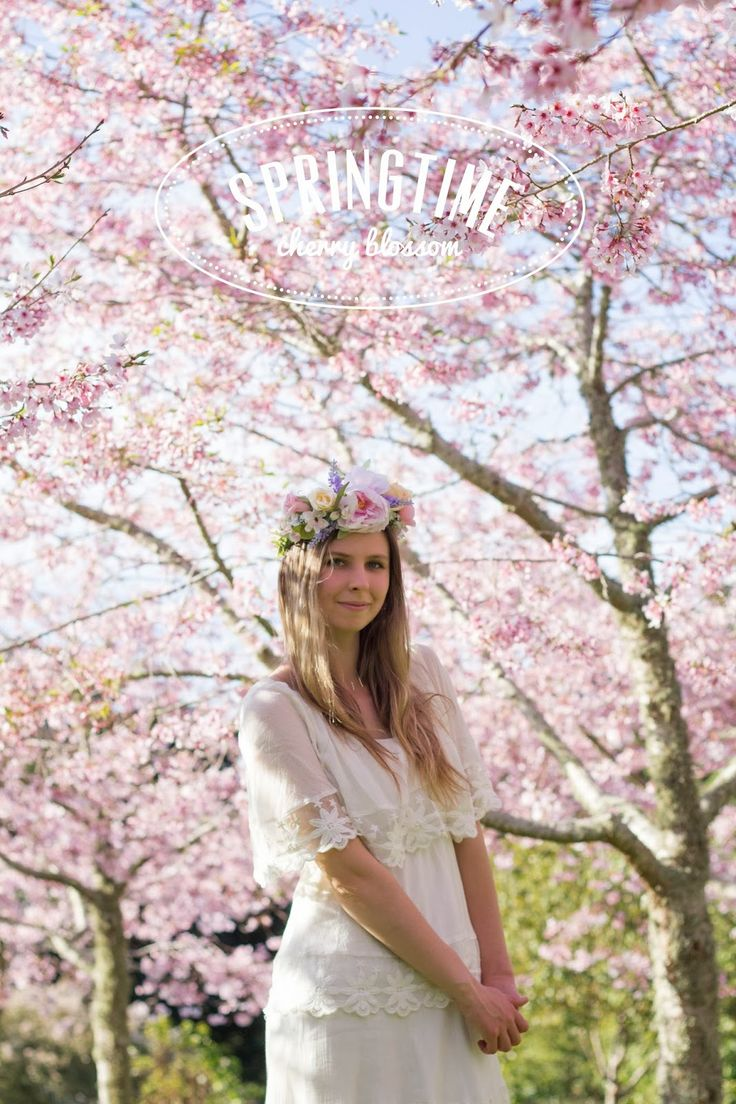 Cherry Blossom photo shoot with text Rose Tinted Design