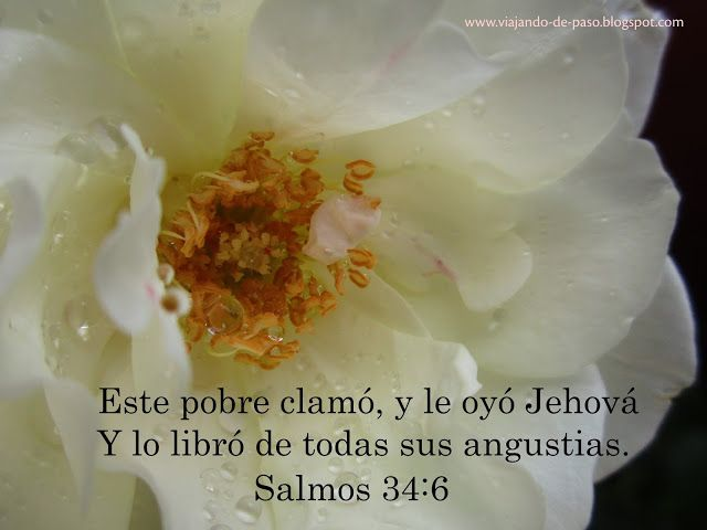 Viajando de Paso: Salmos 34:6